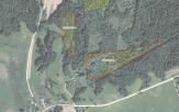 Miškų ūkio paskirties žemės sklypo pardavimo aukcionas Utenos r. sav., Tauragnų sen., Vilkablauzdės k. (kadastro Nr. 8227/0002:144)