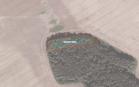 Miškų ūkio paskirties žemės sklypo pardavimo aukcionas Pakruojo r. sav., Klovainių sen., Titonių k. (kadastro Nr. 6501/0004:262)