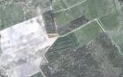Uždaras miškų ūkio paskirties žemės sklypo pardavimo aukcionas Tauragės r. sav., Gaurės sen., Stirbaičių k. (kadastro Nr. 7723/0003:551)