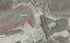 Miškų ūkio paskirties žemės sklypo pardavimo aukcionas Varėnos r. sav., Marcinkonių sen., Dubo k. (kadastro Nr. 3810/0006:273)