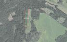Miškų ūkio paskirties žemės sklypo pardavimo aukcionas Utenos r. sav., Vyžuonų sen., Pašilių k. (kadastro Nr. 8280/0006:759)