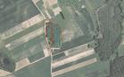 Miškų ūkio paskirties žemės sklypo pardavimo aukcionas Marijampolės sav., Igliaukos sen., Menčtrakio k. (kadastro Nr. 5132/0003:296)