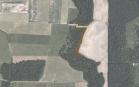 Miškų ūkio paskirties žemės sklypo pardavimo aukcionas Tauragės r. sav., Žygaičių sen., Ringinių k. (kadastro Nr. 7766/0001:546)