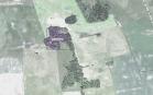 Miškų ūkio paskirties žemės sklypo pardavimo aukcionas Pagėgių sav., Vilkyškių sen., Sokaičių k. (kadastro Nr. 8892/0007:22)