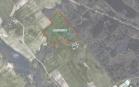 Miškų ūkio paskirties žemės sklypo pardavimo aukcionas Tauragės r. sav., Žygaičių sen., Balčių k. (kadastro Nr. 7766/0005:377)