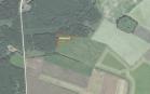 Miškų ūkio paskirties žemės sklypo pardavimo aukcionas Kupiškio r. sav., Alizavos sen., Buožių k. (kadastro Nr. 5737/0003:282)
