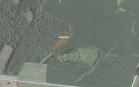 Miškų ūkio paskirties žemės sklypo pardavimo aukcionas Pakruojo r. sav., Lygumų sen., Miniūnų k. (kadastro Nr. 6540/0006:122)