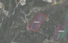 Miškų ūkio paskirties žemės sklypo pardavimo aukcionas Plungės r. sav., Kulių sen., Mižuikų k. (kadastro Nr. 6837/0006:82)