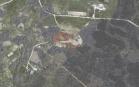Miškų ūkio paskirties žemės sklypo pardavimo aukcionas Tauragės r. sav., Žygaičių sen., Dirvėnų k. (kadastro Nr. 7766/0005:26)