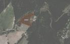 Miškų ūkio paskirties žemės sklypo pardavimo aukcionas Kelmės r. sav., Šaukėnų sen., Pavėžupio k. (kadastro Nr. 5432/0002:8)