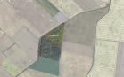 Miškų ūkio paskirties žemės sklypo pardavimo aukcionas Pakruojo r. sav., Pašvitinio sen., Dausiškių k. (kadastro Nr. 6548/0003:135)