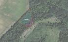 Miškų ūkio paskirties žemės sklypo pardavimo aukcionas Pakruojo r. sav., Lygumų sen., Barvainių k. (kadastro Nr. 6575/0002:65)