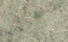 Kitos paskirties žemės sklypo pardavimo aukcionas Kretingos r. sav., Kretingos m., Nepriklausomybės g. 37 (kadastro Nr. 5634/0007:955)