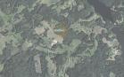 Miškų ūkio paskirties žemės sklypo pardavimo aukcionas Utenos r. sav., Tauragnų sen., Inkartų k. (kadastro Nr. 8207/0005:249)