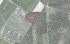 Miškų ūkio paskirties žemės sklypo pardavimo aukcionas Jurbarko r. sav., Šimkaičių sen., Paskynų k. (kadastro Nr. 9440/0005:44)