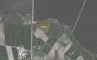 Miškų ūkio paskirties žemės sklypo pardavimo aukcionas Kelmės r. sav., Šaukėnų sen., Palaiškalnio k. (kadastro Nr. 5432/0001:15)