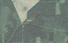 Miškų ūkio paskirties žemės sklypo pardavimo aukcionas Rokiškio r. sav., Juodupės sen., Armonių k. (kadastro Nr. 7355/0001:82)