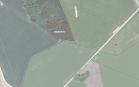 Miškų ūkio paskirties žemės sklypo pardavimo aukcionas Pakruojo r. sav., Rozalimo sen., Čelkių k. (kadastro Nr. 6588/0003:190)