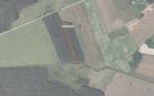 Miškų ūkio paskirties žemės sklypo pardavimo aukcionas Anykščių r. sav., Kavarsko sen., Šovenių k. (kadastro Nr. 3475/0002:69)