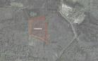 Miškų ūkio paskirties žemės sklypo pardavimo aukcionas Jurbarko r. sav., Veliuonos sen., Paagliuonio k. (kadastro Nr. 9477/0006:151)