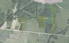 Miškų ūkio paskirties žemės sklypo pardavimo aukcionas Pasvalio r. sav., Daujėnų sen., Liukpetrių k. (kadastro Nr. 6703/0003:97)