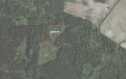 Miškų ūkio paskirties žemės sklypo pardavimo aukcionas Ukmergės r. sav., Deltuvos sen., Vengrių k. (kadastro Nr. 8120/0003:127)