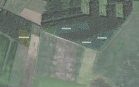 Miškų ūkio paskirties žemės sklypo pardavimo aukcionas Pasvalio r. sav., Vaškų sen., Daukšiogalos k. (kadastro Nr. 6780/0007:23)