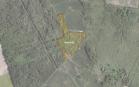 Miškų ūkio paskirties žemės sklypo pardavimo aukcionas Pasvalio r. sav., Namišių sen., Deveitonių k. (kadastro Nr. 6740/0003:128)